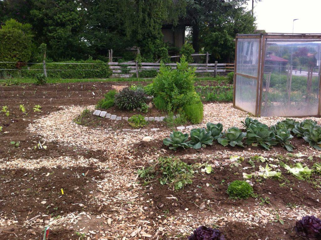 Kita Müntschemier | unser jährlicher Garten